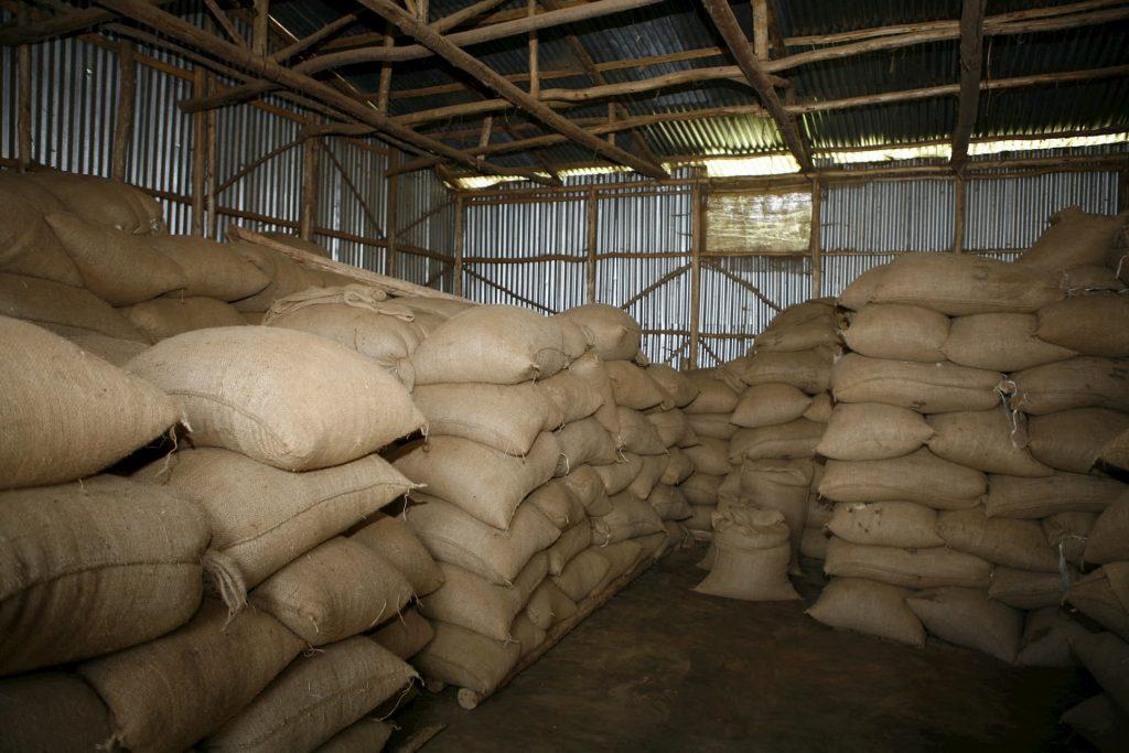 ETHIOPIA, Kaffa, Coop Diri - Coffe Repository