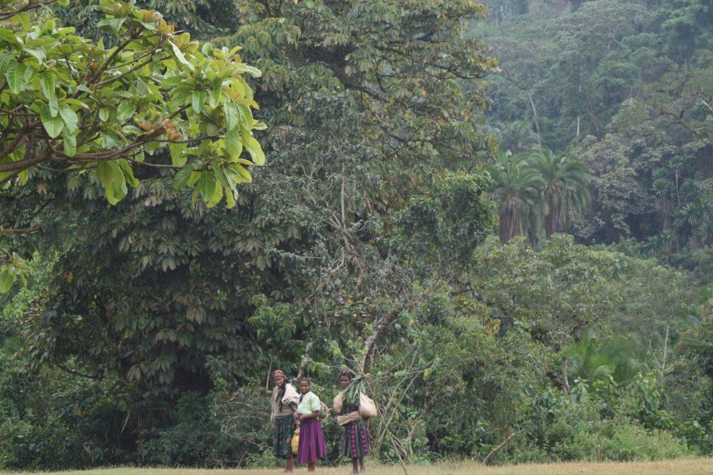 ETHIOPIA, Kaffa, Coop Diri - Coffe Workers
