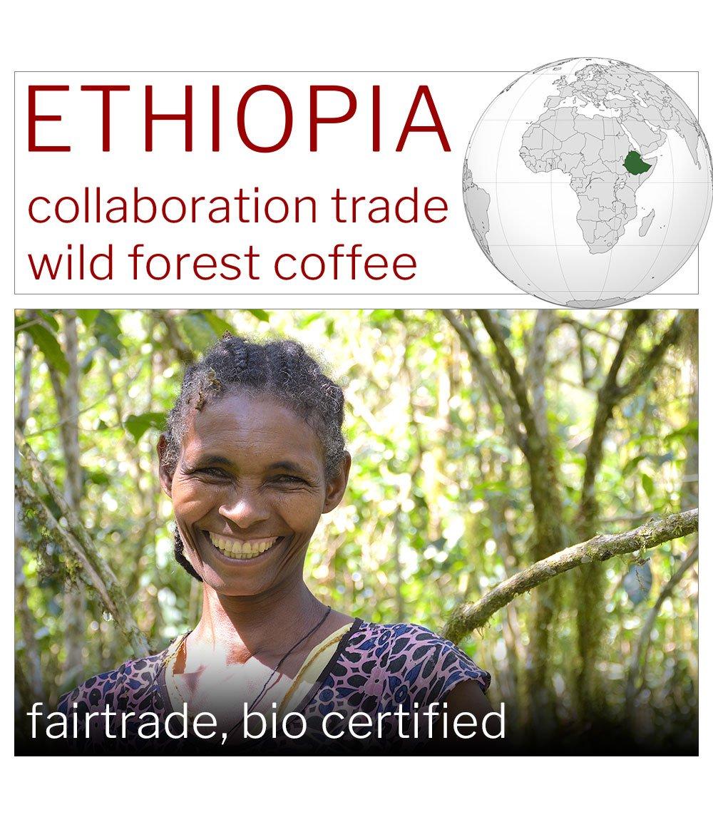 ETHIOPIA, Kaffa, Coop Diri, Bio Fairtrade Sundried