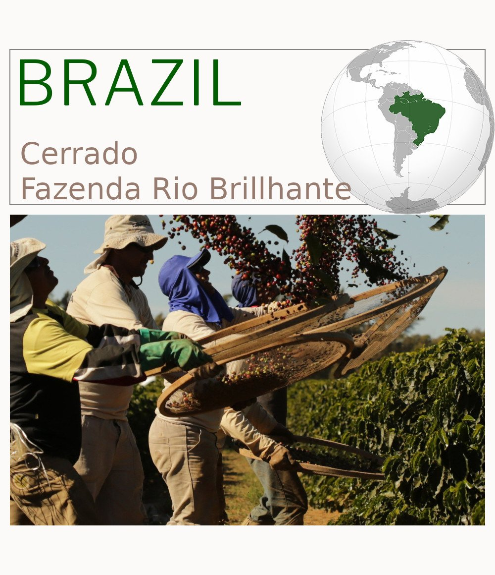 Brazil Cerrado Fazenda Rio Brilhante